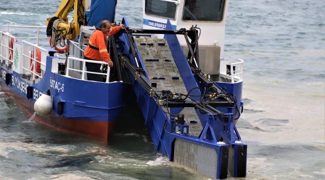 Kartal Sahillerinde Deniz Salyası Alarmı