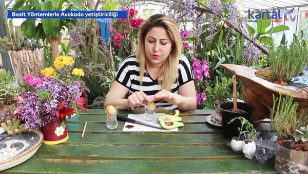 Evde Bitki Yetiştirmenin İncelikleri